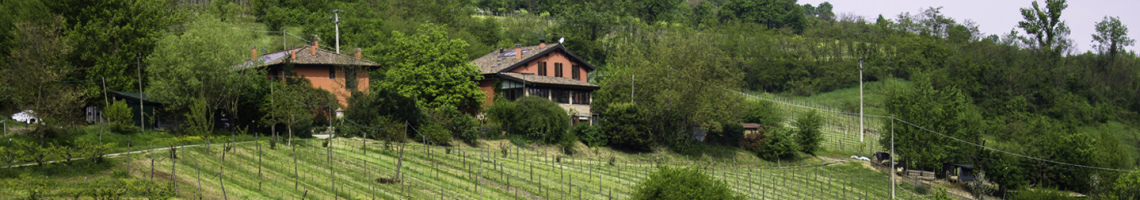 l'agriturismo è immerso nel verde dei colli bolognesi