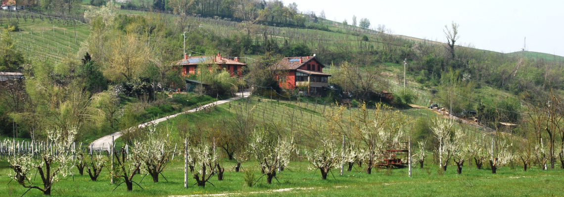 Agriturismo biologico Fattoria Quercia in primavera